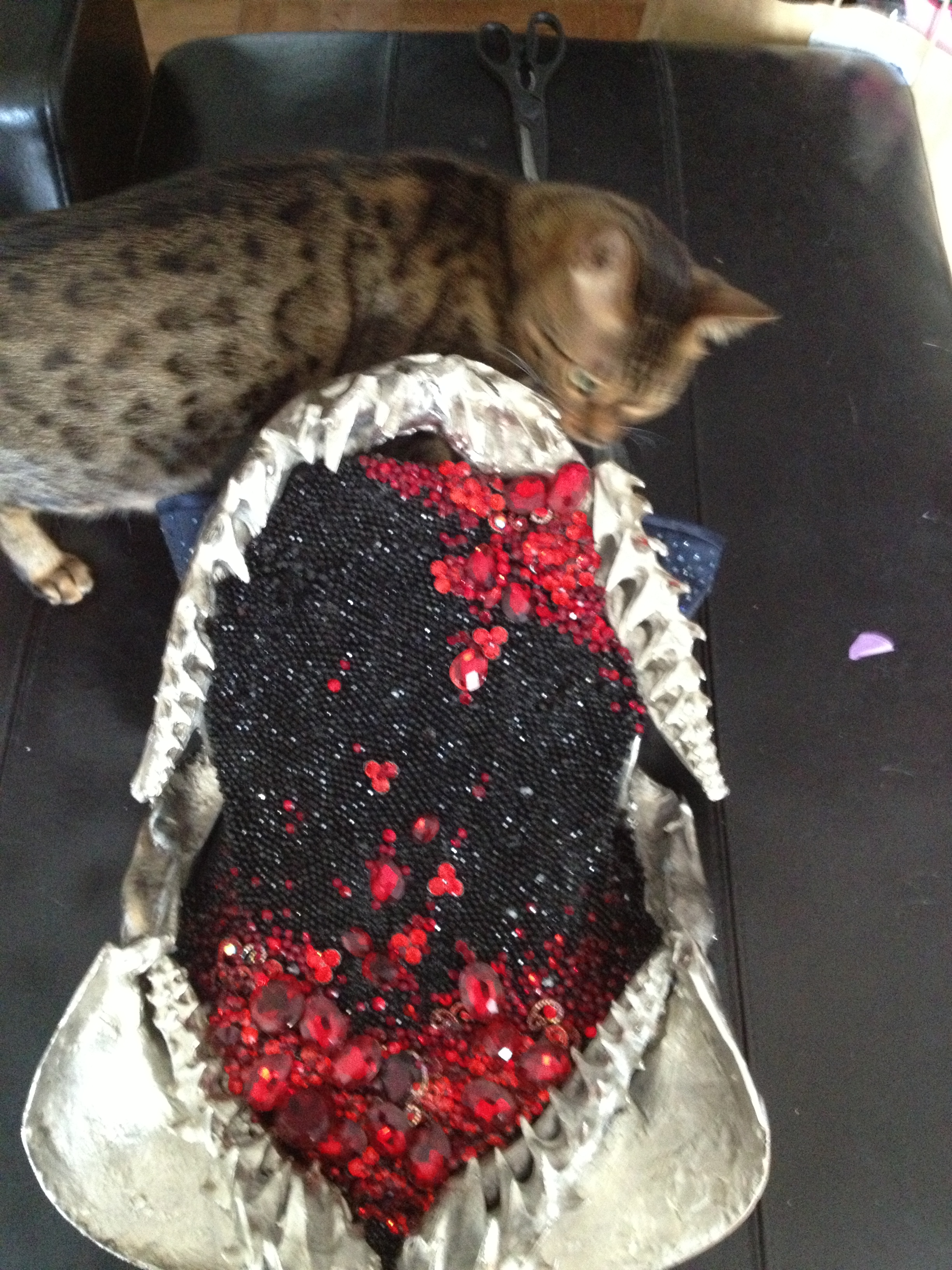 Sven Killes Cat Blog