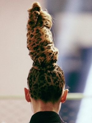 Cat hair 4